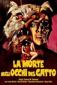 Ver película Siete muertos en el ojo del gato