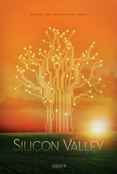 Ver película Silicon Valley (The American Experience)