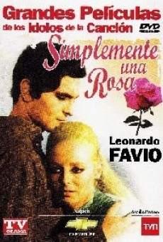 Ver película Simplemente una rosa