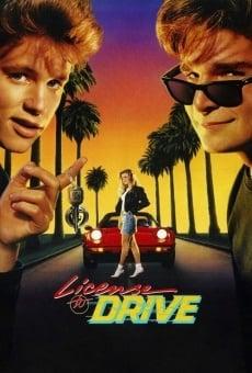 Ver película Sin permiso para manejar