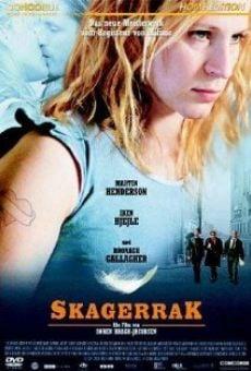 Ver película Skagerrak