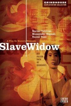 Película: Slave Window