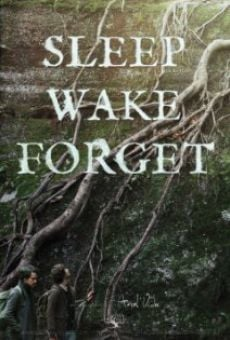 Watch Sleep, Wake, Forget online stream