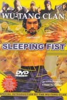 Sleeping Fist online