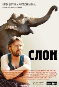 Slon on-line gratuito
