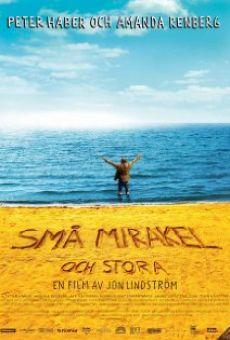 Ver película Små mirakel och stora