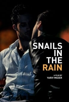 Snails in the Rain online free