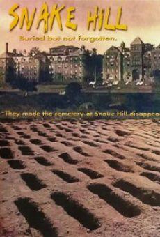Snake Hill en ligne gratuit