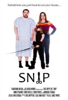 Snip on-line gratuito