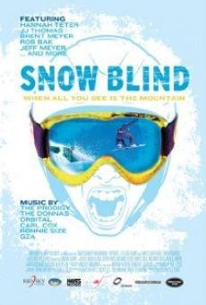 Ver película Snow Blind