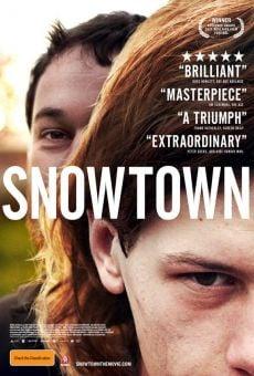 Ver película Snowtown