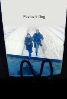 Ver película Sobaka Pavlova