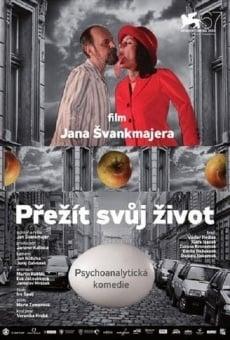 Ver película Sobrevivir a la vida