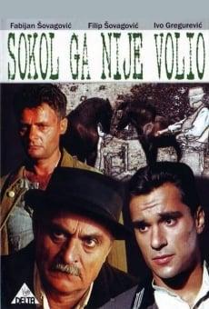 Ver película Sokol Did Not Love Him
