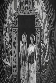Ver película Sombras chinescas