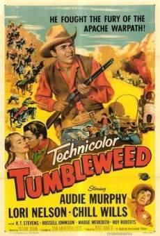 Tumbleweed on-line gratuito
