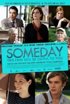 Ver película Someday This Pain Will Be Useful To You