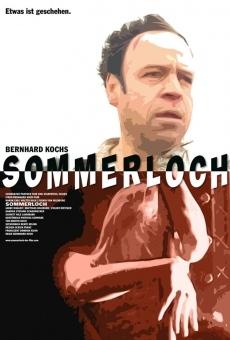 Ver película Agujero de verano