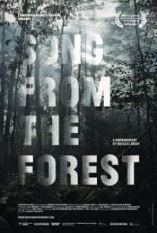 Song from the Forest online streaming