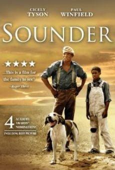Ver película Sounder