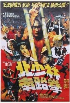 Ver película South Shaolin vs. North Shaolin