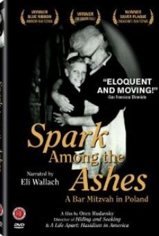 Spark Among the Ashes: A Bar Mitzvah in Poland on-line gratuito