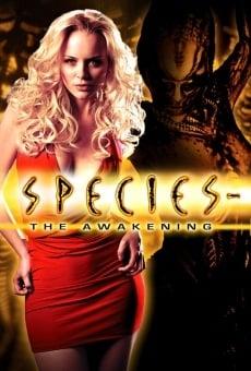 Species IV, El Despertar online