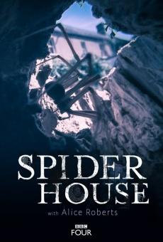 Spider House online