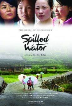 Watch Spilled Water online stream