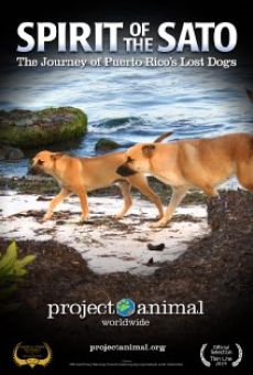 Ver película Spirit of the Sato: The Journey of Puerto Rico's Lost Dogs