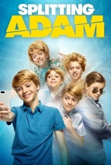Splitting Adam en ligne gratuit