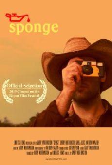 Sponge online