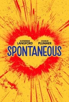 Ver película Spontaneous