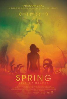 Spring on-line gratuito