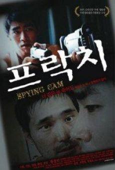 Ver película Spying Cam