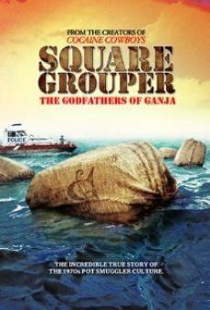 Square Grouper on-line gratuito