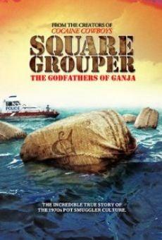 Watch Square Grouper online stream