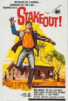Stakeout! gratis
