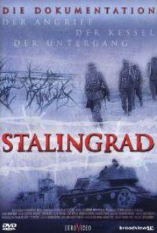 Stalingrad: Der Angriff, der Kessel, der Untergang