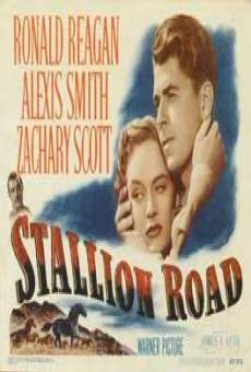 Película: Stallion Road