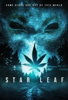 Star Leaf on-line gratuito