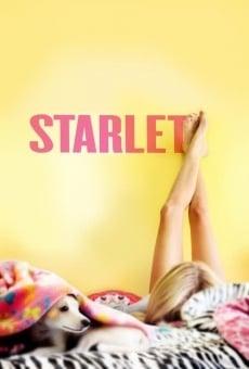 Ver película Starlet
