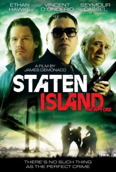 Ver película Staten Island