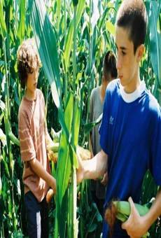Película: Stealing the Corn