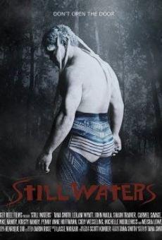 Ver película Still Waters