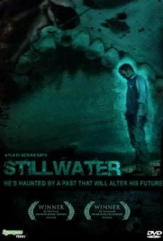 Ver película Stillwater