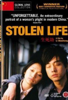 Ver película Stolen Life