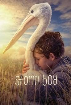 Storm Boy en ligne gratuit