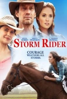 Storm Rider online