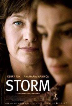 Ver película Storm